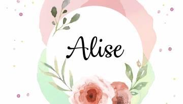 V.d. Alise